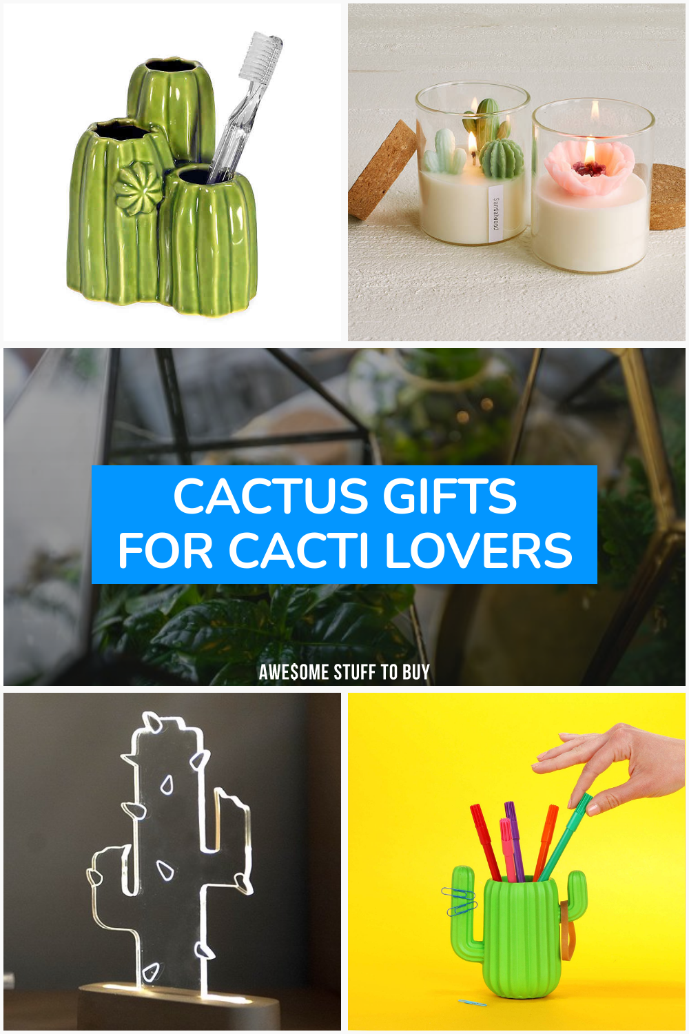 Cactus Gifts for Cacti Lovers // Awesome Stuff to Buy