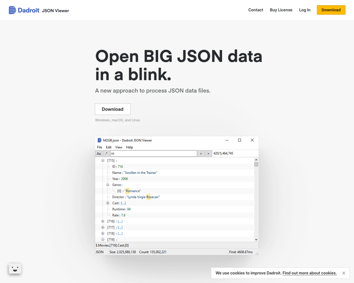 Dadroit JSON Viewer: Open a 1GB JSON file in a blink 💣