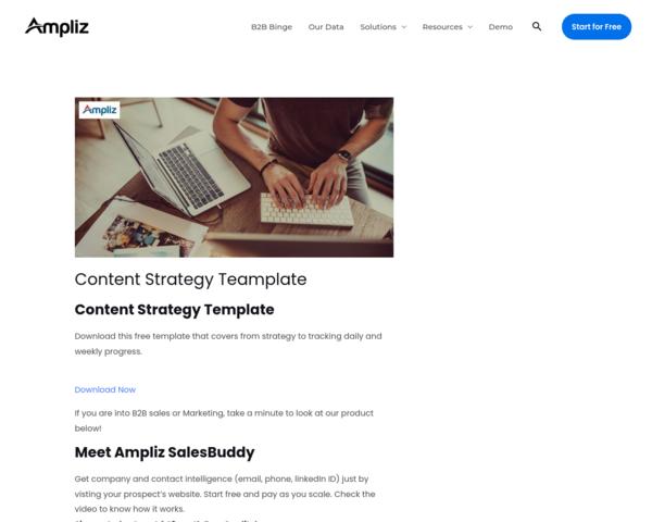 https://www.ampliz.com/resources/content-strategy-template/
