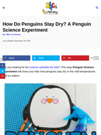How Do Penguins Stay Dry?