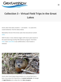 Great Lakes Now Virtual Field Trip