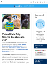 Winged Creatures in 360
