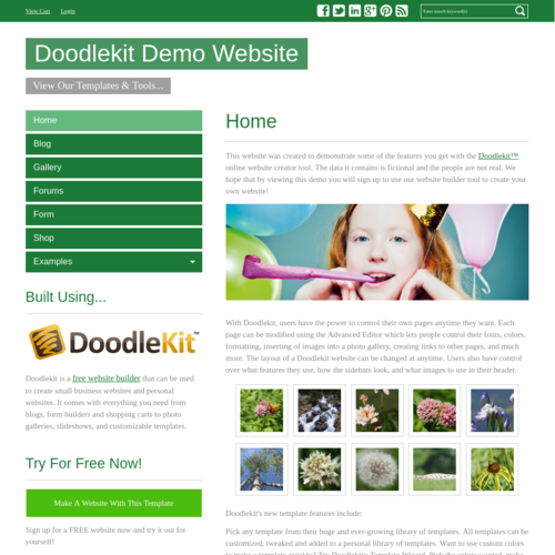 Click to Preview Simple Green V-Nav