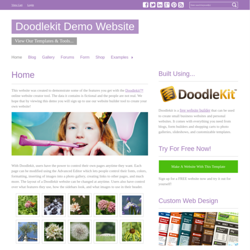 Click to Preview Simple Purple H-Nav