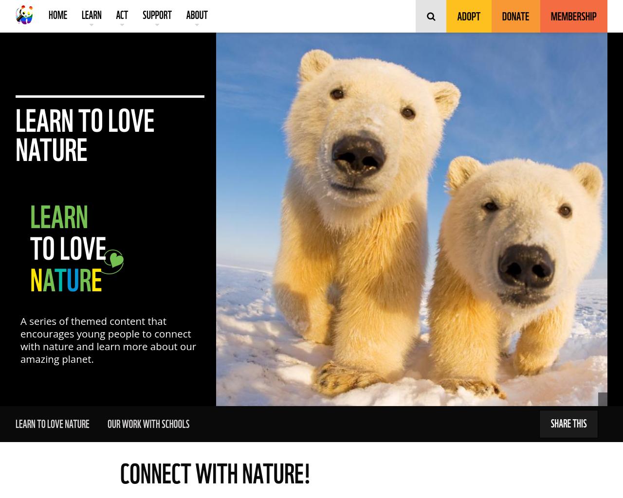 Polar games & activities
