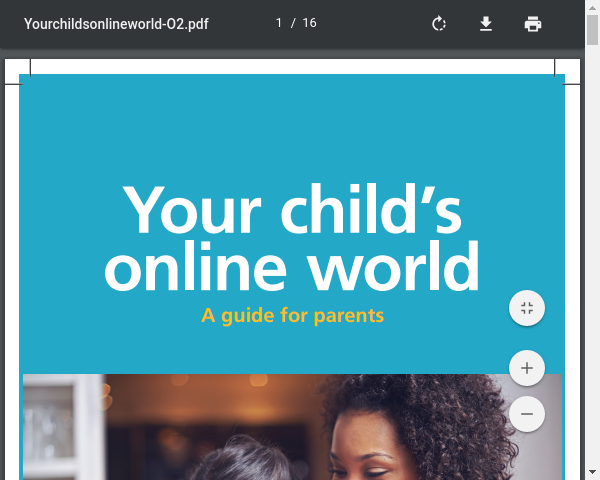 Your Child's Online World