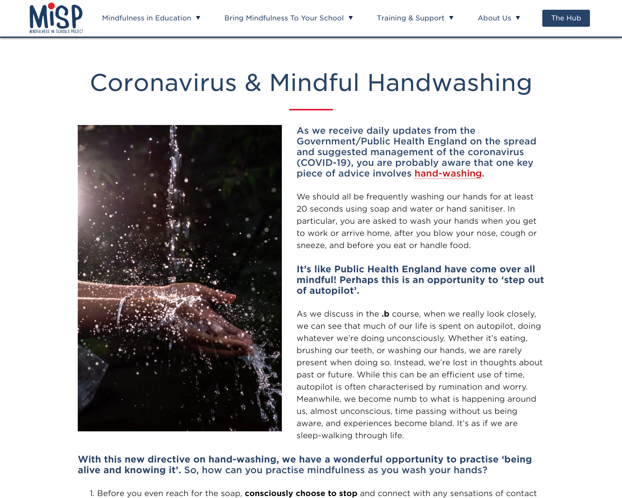 Washing Your Hands - Part 2