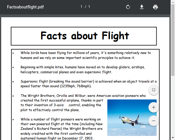 Facts about Flight