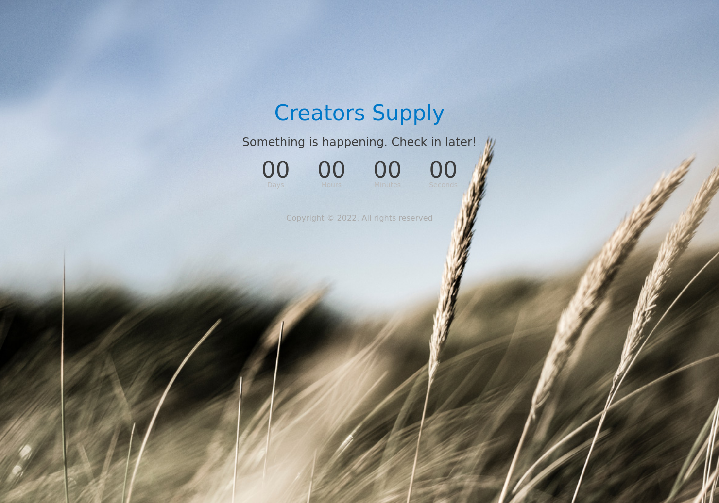 Creators Supply Newsletter